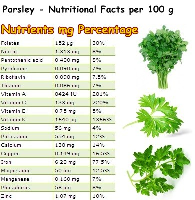 Nutritional Facts Parsley