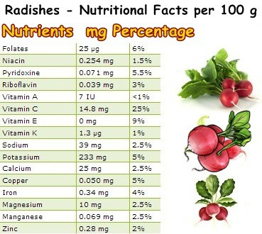 Nutritional Facts Radishes