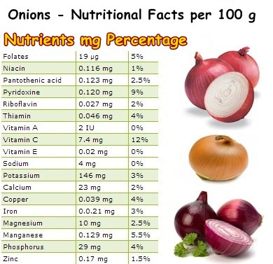 Nutritional Facts onions