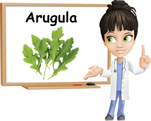 Arugula benefits
