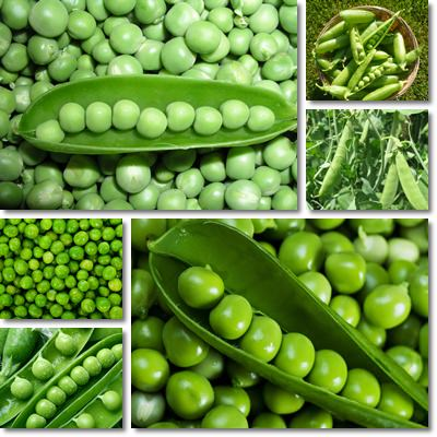Properties and Benefits of Peas