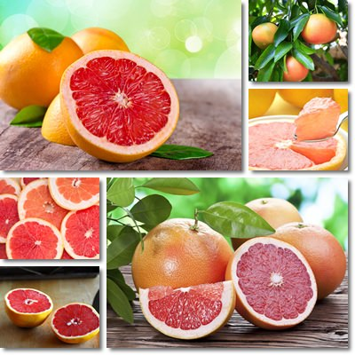Properties and Benefits of Grapefruit