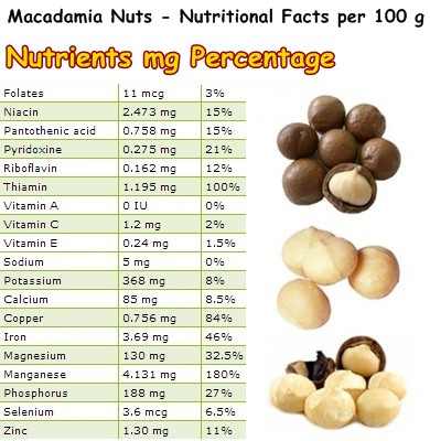Nutritional Facts Macadamia Nuts