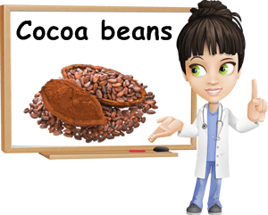 Cocoa beans benefits