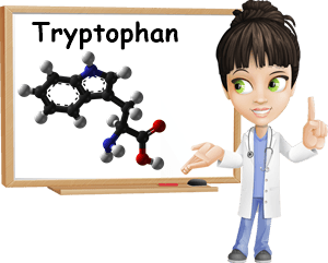 Tryptophan properties