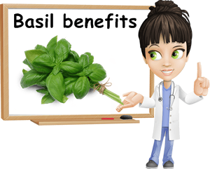 Basil benefits