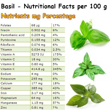 Nutritional Facts Basil