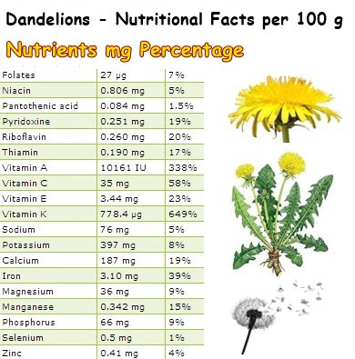 Nutritional Facts Dandelions
