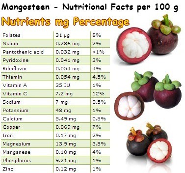 Mangosteen pulp and peel juice – NatureWord