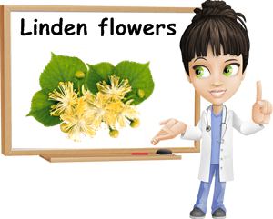 Linden benefits