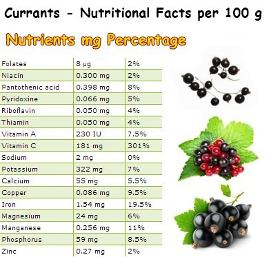 Nutritional Facts Currants