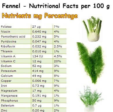 Nutritional Facts Fennel