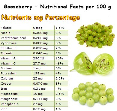 Nutritional Facts Gooseberry