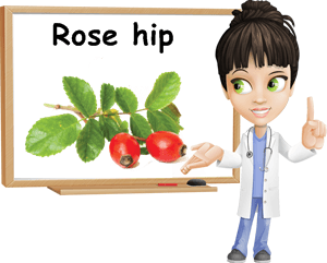 Rose hip benefits