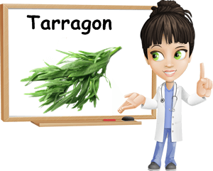 Tarragon benefits