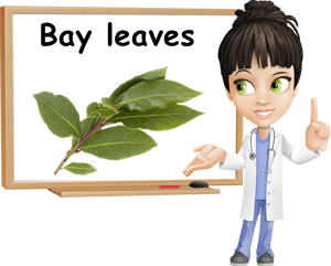 Bay laurel leaves benefits