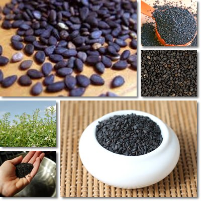 black sesame seeds nutrition table natureword