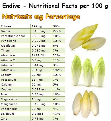 Nutritional Facts Endive