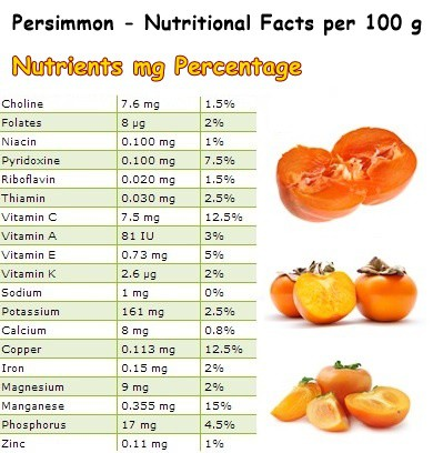 Nutritional Facts Persimmon