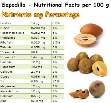 Nutritional Facts Sapodilla