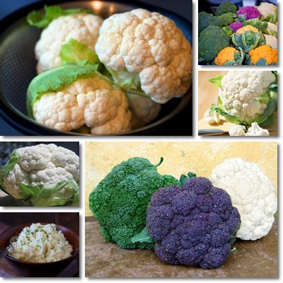 Properties and Benefits of Cauliflower
