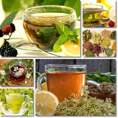 Herbal tea benefits