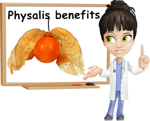Physalis properties