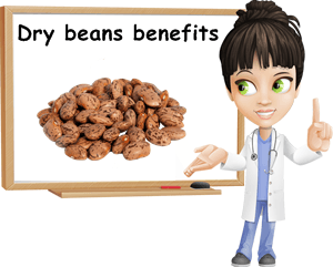 Dry beans properties