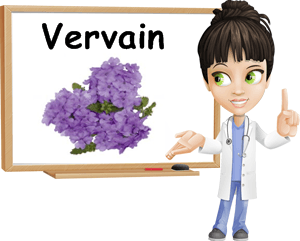 Verbena benefits