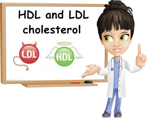 LDL vs HDL cholesterol