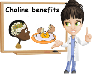 Choline benefits