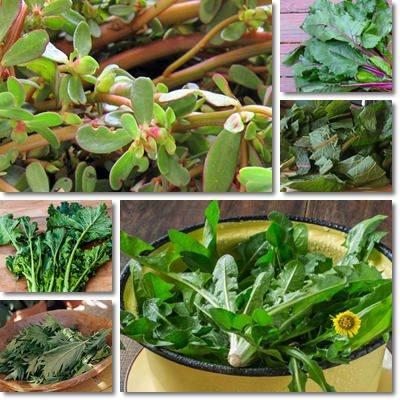 Healthy leafy vegetables