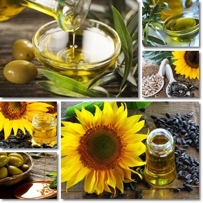 Sunflower oil or olive olive oil