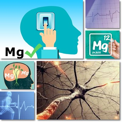 magnesium forms absorption