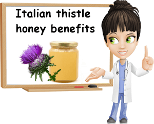 Italian thistle honey benefits