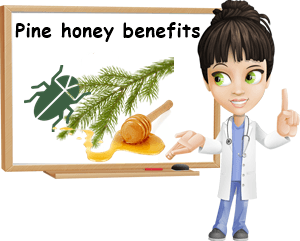 Pine honey benefits