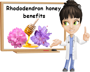 Rhododendron honey benefits