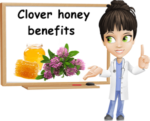 Clover honey benefits