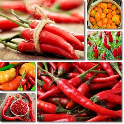 Hot peppers benefits and side effects