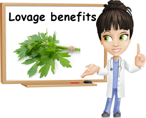 Lovage benefits