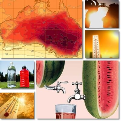 Foods to Eat and to Avoid in a Heatwave