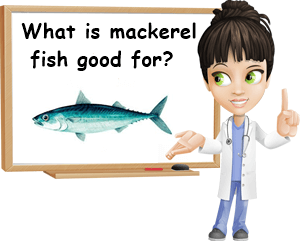 Mackerel fish good