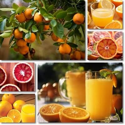 Orange juice or orange fruit