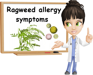 ragweed allergy treatment natureword. Black Bedroom Furniture Sets. Home Design Ideas