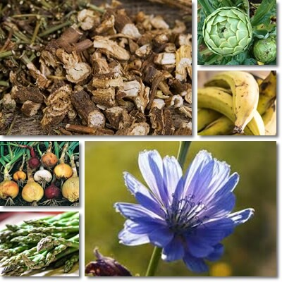 Properties and Benefits of Inulin
