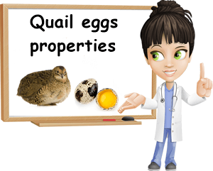 Quail eggs properties