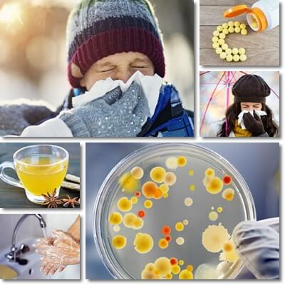 17 Ways to Prevent the Flu