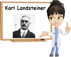 Who was Karl Landsteiner