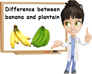 Bananas plantains differences