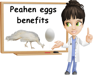 Peahen eggs benefits